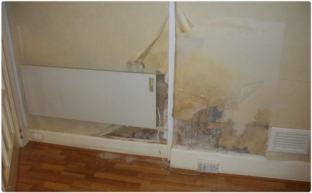 Image of a wall ruined by rising damp before damp experts remove it